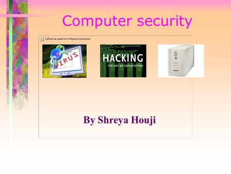 Computer security By Shreya Houji. VirusesViruses.