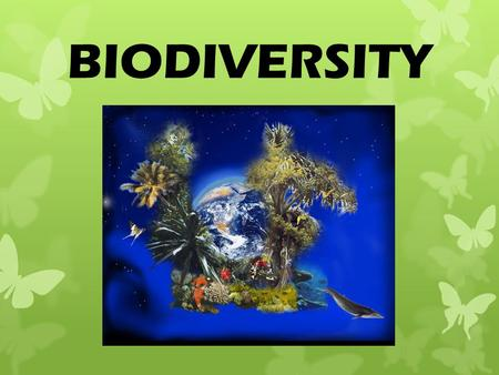 BIODIVERSITY. What is BIODIVERSITY? The number of different species in an area.
