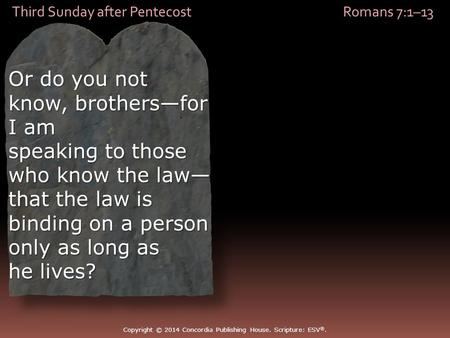 Third Sunday after Pentecost Romans 7:1–13 Or do you not know, brothers—for I am speaking to those who know the law— that the law is binding on a person.