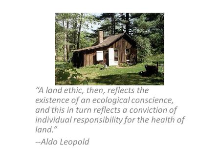 """A land ethic, then, reflects the existence of an ecological conscience, and this in turn reflects a conviction of individual responsibility for the health."
