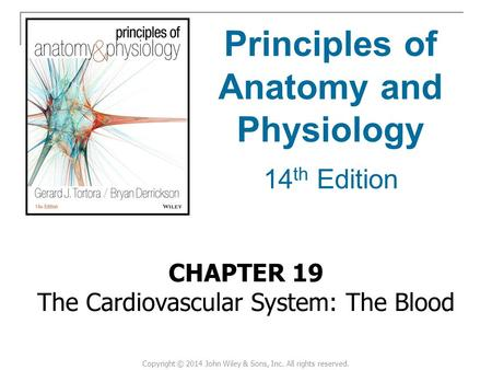 Human physiology ch 14 cardiovascular system - College paper Sample