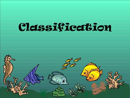 Classification. I. Introduction A.Classification is the grouping of objects or information based on similarities B. Taxonomy is the branch of biology.