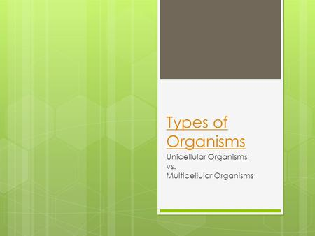Types of Organisms Unicellular Organisms vs. Multicellular Organisms.