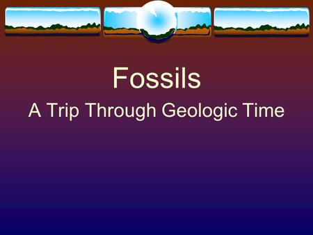 Fossils A Trip Through Geologic Time. Fossils  Fossils are preserved remains or traces of living things.  Most fossils form from animals and plants.