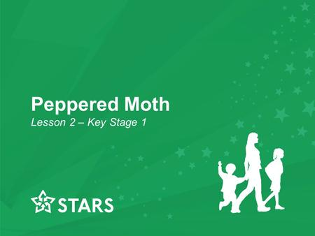 Peppered Moth Lesson 2 – Key Stage 1. Starter Activity Spell the following words on your mini whiteboards: