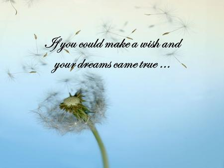 If you could make a wish and your dreams came true …