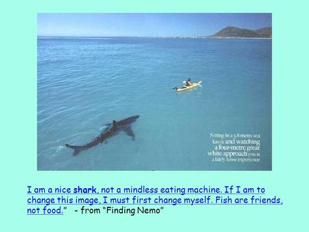 I am a nice shark, not a mindless eating machine. If I am to change this image, I must first change myself. Fish are friends, not food.I am a nice shark,