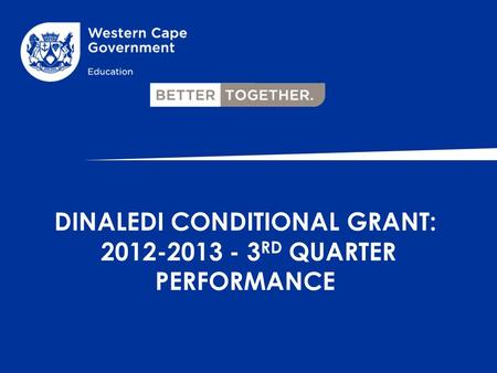 DINALEDI CONDITIONAL GRANT: 2012-2013 - 3 RD QUARTER PERFORMANCE.