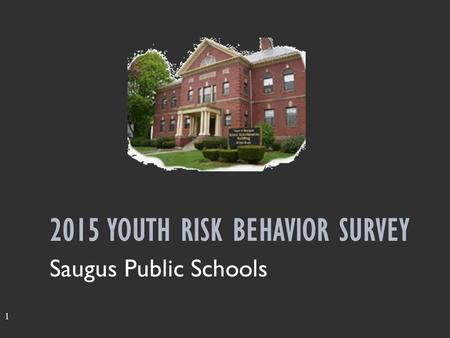 1 2015 YOUTH RISK BEHAVIOR SURVEY Saugus Public Schools.