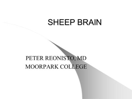 SHEEP BRAIN PETER REONISTO, MD MOORPARK COLLEGE. BRAIN (SUPERFICIAL VIEW) 1.Cerebral Hemispheres 2. Longitudinal Cerebral Fissure 3. Cerebral Gyrus 4.Cerebral.