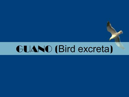 GUANO ( Bird excreta ). For 11 th standard Economic Zoology: Guano. Guano is the accumulated excrement or droppings of fish eating sea birds such as gannets,