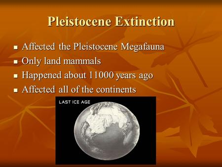 Pleistocene Extinction Affected the Pleistocene Megafauna Affected the Pleistocene Megafauna Only land mammals Only land mammals Happened about 11000 years.