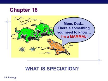 AP Biology Mom, Dad… There's something you need to know… I'm a MAMMAL! Chapter 18 WHAT IS SPECIATION?