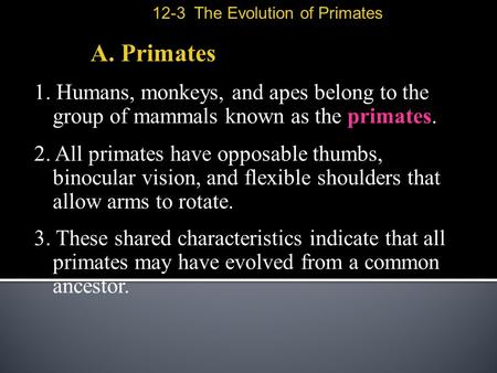 A. Primates 1. Humans, monkeys, and apes belong to the group of mammals known as the primates. 2. All primates have opposable thumbs, binocular vision,