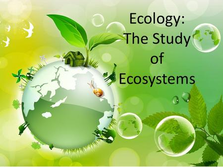 Ecology: The Study of Ecosystems. Organization of Life AKA Biological Organization.