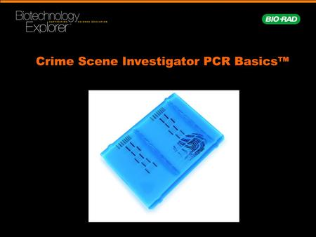 Crime Scene Investigator PCR Basics™. Workshop Time Line Introduction to DNA profiling Set up PCR reactions Electrophorese PCR products Analysis and interpretation.