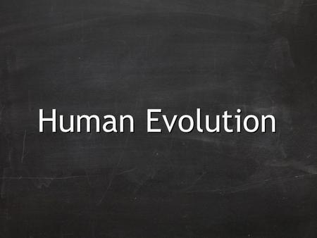 Human Evolution. Evolution of humans is believed to have begun with the earliest primates 60 million years ago.