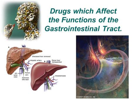 Drugs which Affect the Functions of the Gastrointestinal Tract.