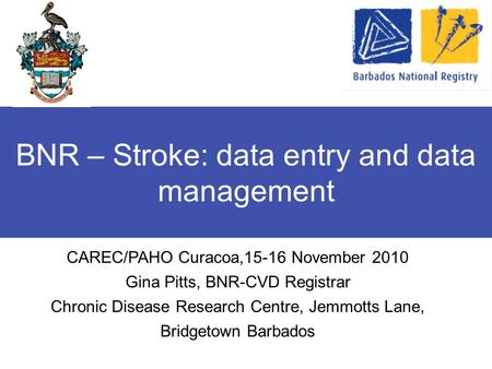 BNR – Stroke: data entry and data management CAREC/PAHO Curacoa,15-16 November 2010 Gina Pitts, BNR-CVD Registrar Chronic Disease Research Centre, Jemmotts.