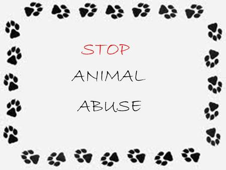 STOP ANIMAL ABUSE. No one wants to see this…… So why is it okay for us to see this….?