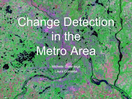 Change Detection in the Metro Area Michelle Cummings Laura Cossette.
