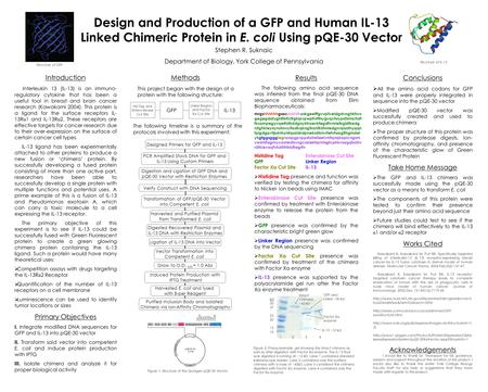 Design and Production of a GFP and Human IL-13 Linked Chimeric Protein in E. coli Using pQE-30 Vector Stephen R. Suknaic Department of Biology, York College.