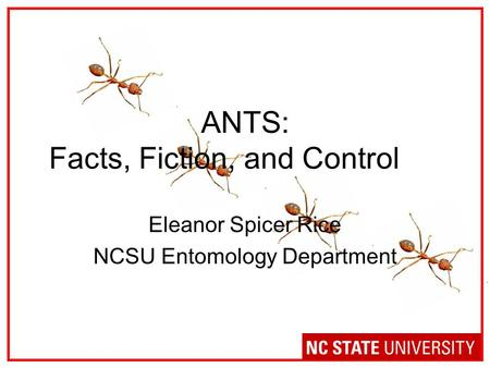 ANTS: Facts, Fiction, and Control Eleanor Spicer Rice NCSU Entomology Department.