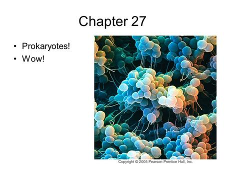 Chapter 27 Prokaryotes! Wow!. Some Interesting Info… *The biomass of all the prokaryotes of the world is 10 times that of eukaryotes! *The # of prokaryotes.