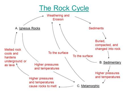 The Rock Cycle A. Igneous Rocks C. Metamorphic B. Sedimentary Melted rock cools and hardens underground or as lava Higher pressures and temperatures cause.