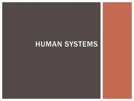 HUMAN SYSTEMS. ECONOMIC GEOGRAPHY  Economic Sectors  Primary – involve using the ground  Secondary – manufacturing & construction  Tertiary – provide.