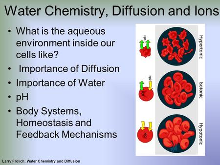 What is the aqueous environment inside our cells like? Importance of Diffusion Importance of Water pH Body Systems, Homeostasis and Feedback Mechanisms.