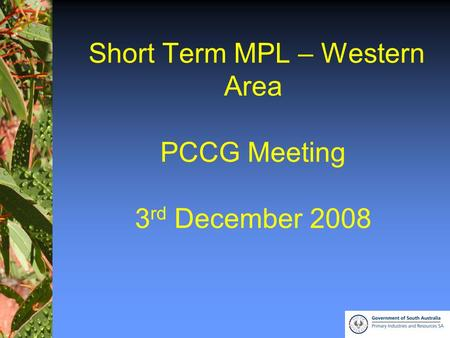 1 Short Term MPL – Western Area PCCG Meeting 3 rd December 2008.