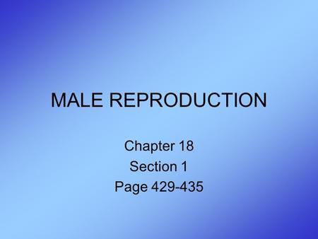 MALE REPRODUCTION Chapter 18 Section 1 Page 429-435.