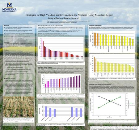 Winterhardiness Genetics for the Northern Rockies In 2003, Charlie Rife from KSU sent a collection of Russian winter canola lines that he hoped was the.
