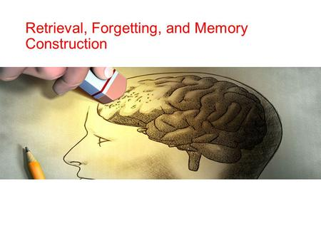 Retrieval, Forgetting, and Memory Construction.