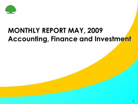 1 MONTHLY REPORT MAY, 2009 Accounting, Finance and Investment.