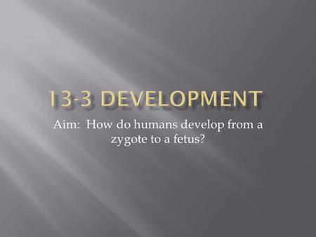 Aim: How do humans develop from a zygote to a fetus?