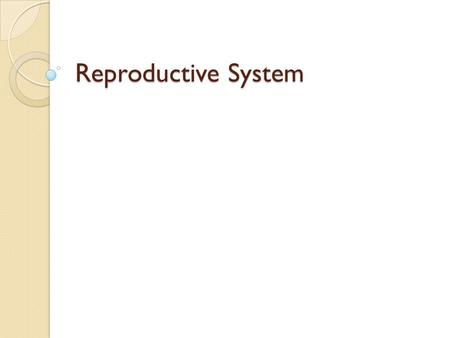 Reproductive System. Vocabulary Vagina – opening to the uterus by way of the cervix Cervix – base of/opening to the uterus Uterus – implantation occurs.