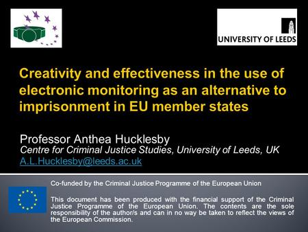 Professor Anthea Hucklesby Centre for Criminal Justice Studies, University of Leeds, UK Co-funded by the Criminal Justice Programme.