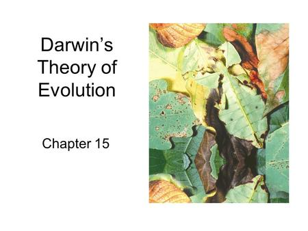 Darwin's Theory of Evolution Chapter 15. THE BIG PICTURE Evolutionary Theory A collection of scientific facts, observations, and hypotheses which explains.