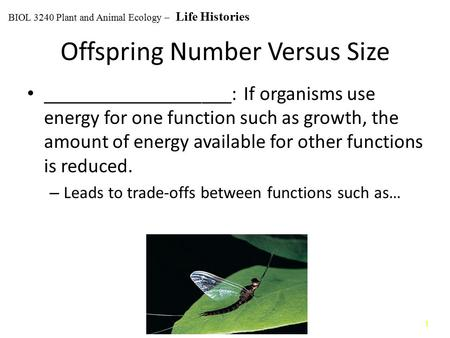 11 Offspring Number Versus Size ___________________: If organisms use energy for one function such as growth, the amount of energy available for other.
