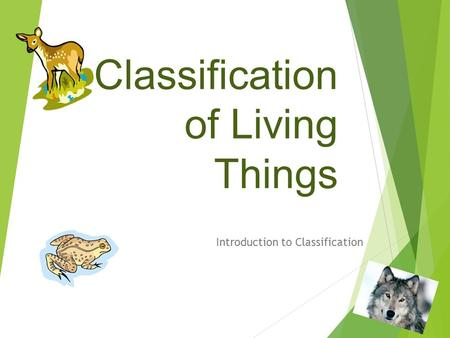 Classification of Living Things Introduction to Classification.