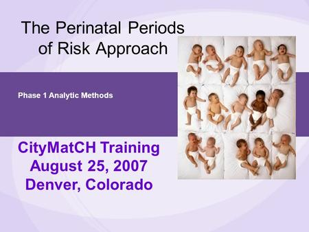 The Perinatal Periods of Risk Approach CityMatCH Training August 25, 2007 Denver, Colorado Phase 1 Analytic Methods.