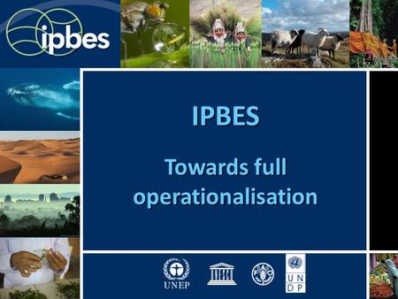 IPBES Towards full operationalisation. Outline of the briefing 1.Process, mandates and basis for the plenary meeting on IPBES 2.Agenda and documentation.