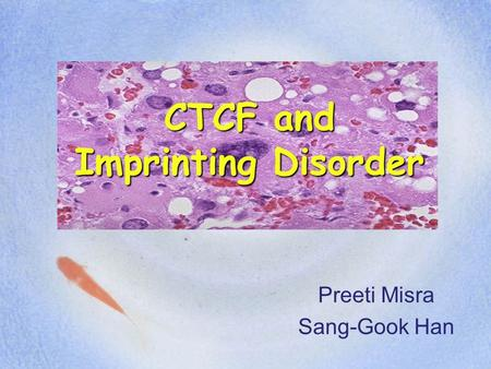CTCF and Imprinting Disorder Preeti Misra Sang-Gook Han.