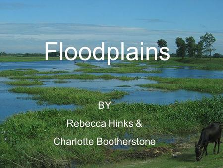 Floodplains BY Rebecca Hinks & Charlotte Bootherstone.