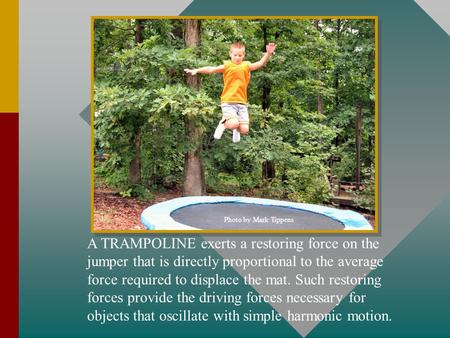 Photo by Mark Tippens A TRAMPOLINE exerts a restoring force on the jumper that is directly proportional to the average force required to displace the.