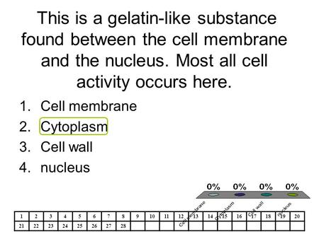 This is a gelatin-like substance found between the cell membrane and the nucleus. Most all cell activity occurs here. 1.Cell membrane 2.Cytoplasm 3.Cell.