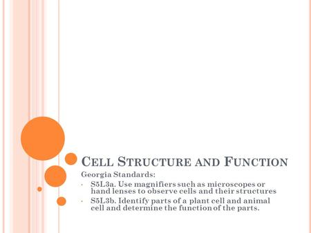 C ELL S TRUCTURE AND F UNCTION Georgia Standards: S5L3a. Use magnifiers such as microscopes or hand lenses to observe cells and their structures S5L3b.
