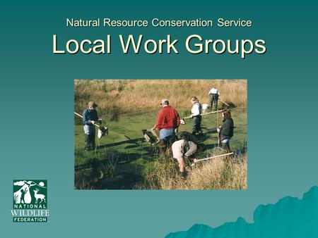 Natural Resource Conservation Service Local Work Groups.